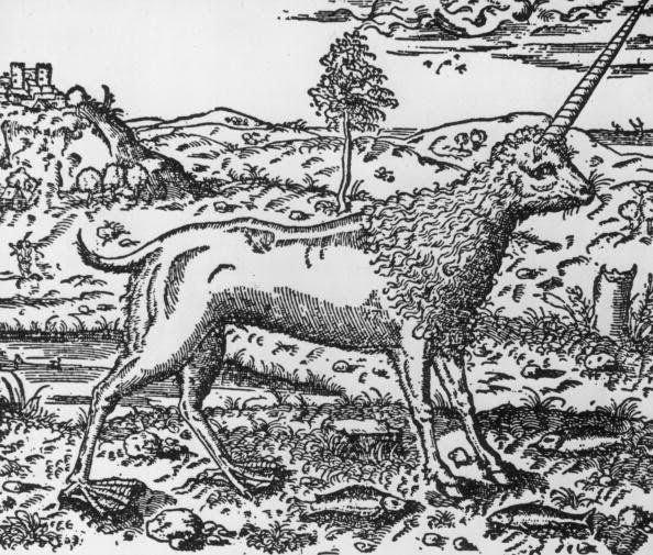 Representación de un unicornio del siglo XVI.
