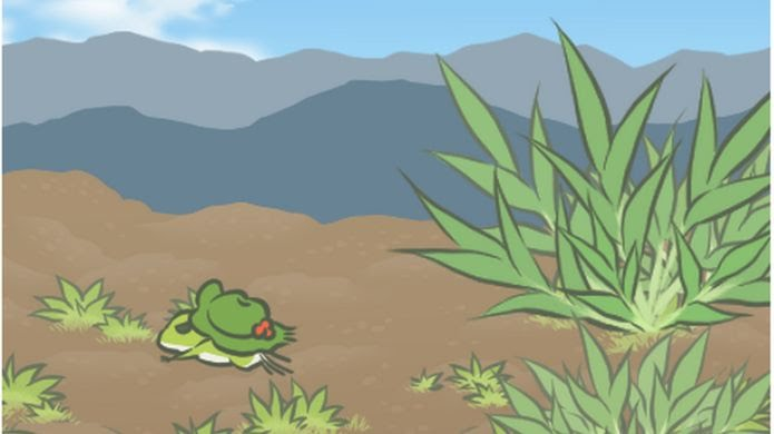 The frog travels in a desert