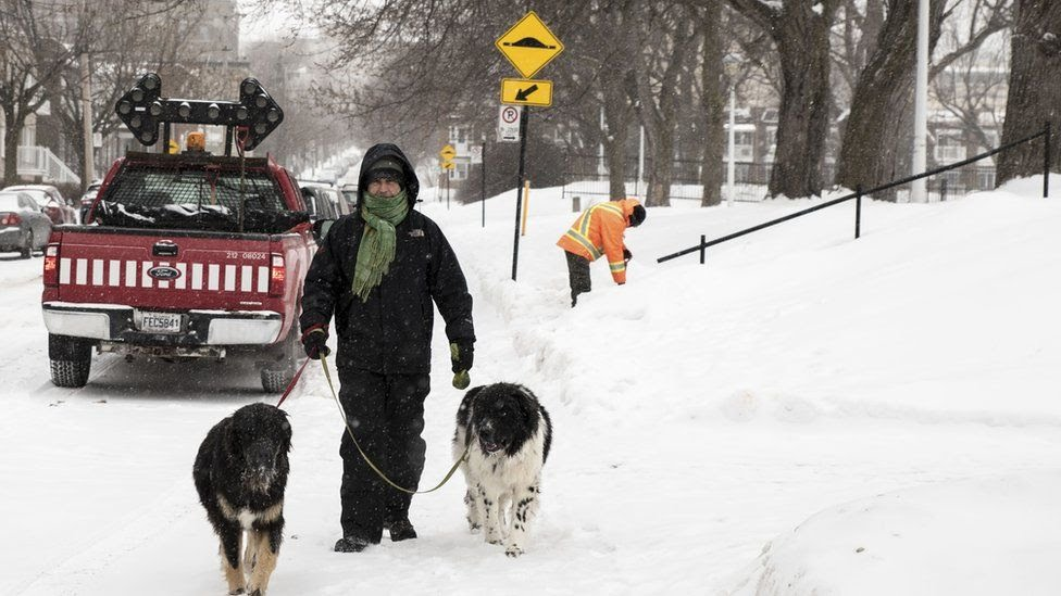 A man walks his dogs in the snow on a cold winter day in Montreal